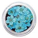 Dry Flowers - Blue 20pcs